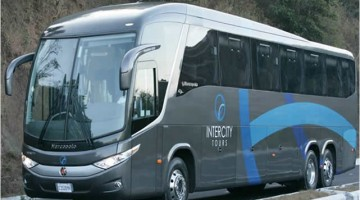 Luxury Buses to El Salvador
