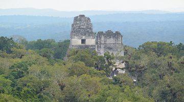 Viaje a Tikal un día para Chapines